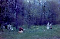 May, 1962. Gathering Cowslip greens. - Harold Crandal Lowing (Dad) Farm 3695 Bauer Road, Jennison, Michigan