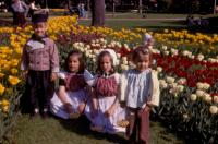 1969. Tulip Festival. Robert Lowing Brink, Jeanne Marie Brink, Anne Renee Brink, Mary Lynne Brink in Centennial Park, Holland, Michigan.